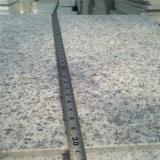 Punti Bullnose bianchi poco costosi cinesi del bordo del granito G603