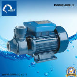 Pm45/50/60 Electric Water Pump para Celan Water Domestic Use (0.55HP/0.75HP/1HP) 1 Inch Outlet