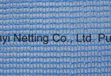 Antihagel-Netz (schützendes Netz)