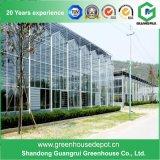 Serra di vetro di alluminio del galleggiante di alta qualità da vendere