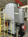 caldaia a vapore di condensazione verticale 2t/H