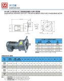 Vertikales hohes Verhältnis-Feuergebührentyp Reduzierstück-3-phasiger (Bremse) Motor mit Aluminium- oder Stahlplatte