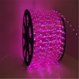 Lichte 12V Kleur die van de LEIDENE de Lichte Kabel van het Zwembad LEIDENE Kabel veranderen groeit Licht