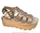 Pattini elastici piani del gladiatore delle donne del sandalo della gomma piuma di EVA di modo