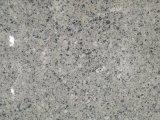 Prezzo di fabbrica diretto del granito grigio piacevole per il servizio del Marocco