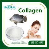 Colágeno puro de la fuente del fabricante, colágeno de los pescados, polvo del colágeno de los pescados
