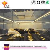 Heißer Verkauf China bildete LED-Erscheinen-Fall-Streifen-Licht