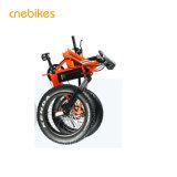 جديد تصميم [هيغقوليتي] كهربائيّة سمين إطار العجلة درّاجة لأنّ عمليّة بيع