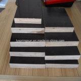 Utiliza paneles de encofrado fenólico, Marine Ply madera para construcción, la película enfrenta el contrachapado de concreto
