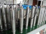 Acier inoxydable 304 pompes à eau solaires matérielles/pompe solaire submersible pour des puits