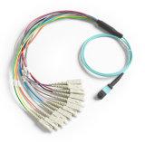 Cavo di zona ottico della fibra del cavo 8/12/24 MPO/MTP della zona dell'Assemblea MPO