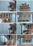 Xg-300 Machine automatique de plafonnement de l'linéaire pour le miel