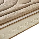 Alto contenido en carbono de resorte de acero fino con colchón de espuma para Hotel (FB739)