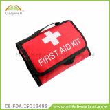 緊急の屋外旅行医学の救急箱