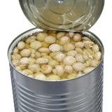 Nourriture en boîte en boîte par champignons de paris de vente populaire de champignon de couche