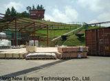 1*800m3 Cstr 소화자 Biogas 플랜트