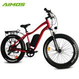 Fettes elektrisches Fahrrad des Gummireifen-500W 750W 1000W 48V