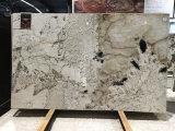 Великолепие Белый Quartzite полированной плитки&слоев REST&место на кухонном столе