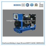 Dieselset des generator-15kw/18.8kVA mit chinesischem Lijia Motor