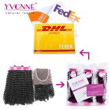 Yvonne-Spitzenverkaufs-natürliche Farben-Jungfrau-brasilianische verworrene lockiges Haar-Webart