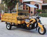 日光の証拠が付いている重いローディング3の車輪の三輪車