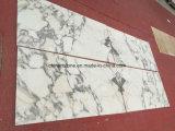 中国はプロジェクトのためのBianco Arabascataの白い大理石の平板を砥石で研いだ
