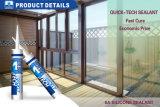 puate d'étanchéité 300ml acétique universelle pour le guichet/glace/porte 280g