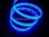 Tira de LED flexible de alto brillo con aprobación CE de color azul (multicolor) la luz