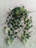 اصطناعيّة معمل وزهرات من يعلّب بوش [غلدن بوثوس] [إيمغ20151201144833]