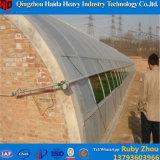 Heißes einzelnes Tunnel-Gewächshaus-Plastikblatt des Verkaufs-2016 für Tomate und landwirtschaftlich