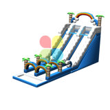 Trasparenza di acqua gonfiabile di successo per il parco di divertimenti