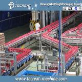 Suco completo preenchimento automático de máquina de engarrafamento para linha de engarrafamento