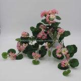 El alto grado de flor artificial Pennywort colgantes para decorar el jardín