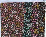 يطبع قطر فرشاة خاصّ بالأزهار أربة بناء