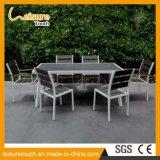 Tabella pranzante del giardino moderno di svago e mobilia esterna di alluminio della presidenza