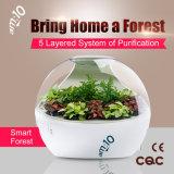 Небольшой Smart-Forest воздухоочиститель 8700 с интеллектуальной системой мониторинга для домашнего использования