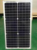 Panneau solaire 30W mono pour le système solaire à la maison
