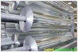 Máquina de recubrimiento automático para plantas medicinales de la lámina de aluminio (DLPTP-600A)