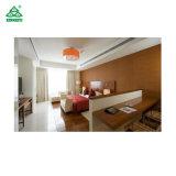 Роскошный отель с одной спальней обставлены мебелью с Moistureproof ламинат фанера