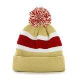 Связанный промотированием шлем Beanie на зима в изготовленный на заказ логосе