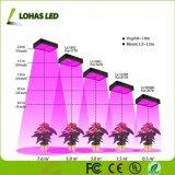 De serre/Medische leiden van het Comité van het Spectrum van Installaties 300W Volledige groeit Licht