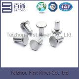 5X10mmの白亜鉛カラー平らなヘッド固体鋼鉄リベット