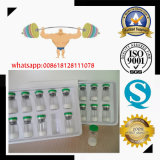 2mg/pó liofilizado Bodybuilding Pentadecapeptide Bpc 157 do tubo de ensaio