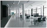 Hot Sale Terrazzo Design Rustic Tile 600 * 1200mm pour mur ou plancher PS2621404p