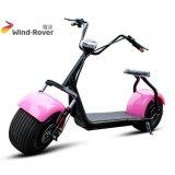 مدينة جوز هند سمين إطار العجلة كهربائيّة درّاجة ناريّة اثنان عجلة كهربائيّة وسط درّاجة