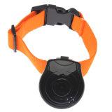 Registrador da câmara de vídeo do LCD do gato do cão da câmera do animal de estimação dos acessórios quentes do colar dos produtos do animal de estimação mini