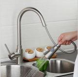 La piattaforma montata estrae il rubinetto d'ottone della cucina della molla del becco