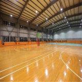 Edifício de campo de basquete interior coberto em grande escala para venda