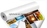 180g 220g 260 g de papier photo à l'éco solvant bon marché du papier photo
