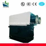 moteur à courant alternatif Triphasé à haute tension de refroidissement air-air de série de 6kv/10kv Ykk Ykk6303-8-1000kw
